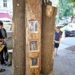 Eerste Nederlandse Boekenboom komt in Zwijndrecht