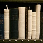 Installatie 'The library' van Lynne Leegte in Artis Bibliotheek