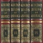 Het vogeltjesboek van Audubon komt weer ter veiling – wordt record van 11,5 miljoen dollar gebroken?