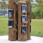 De Boekenboom in Zwijndrecht is genomineerd voor de Onderwijsprijs Zuid-Holland