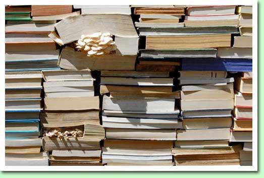 book-garden-2.jpg