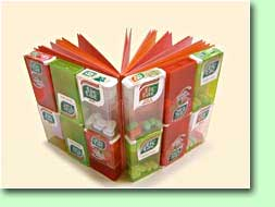 breda-boekband-1.jpg