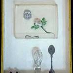 De kastjes van Kees Buddingh' te zien in Dordrechts Museum bij tentoonstelling 'Kastjes Kijken'