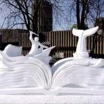 Maakte u al een sneeuwboek?