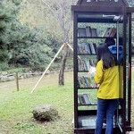 Forest Libraries in Korea