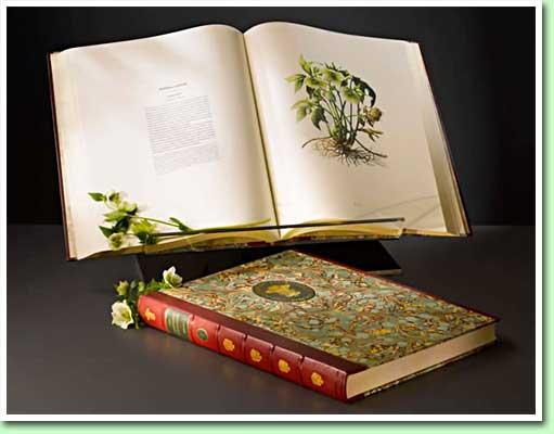 highgrove-florilegium.jpg